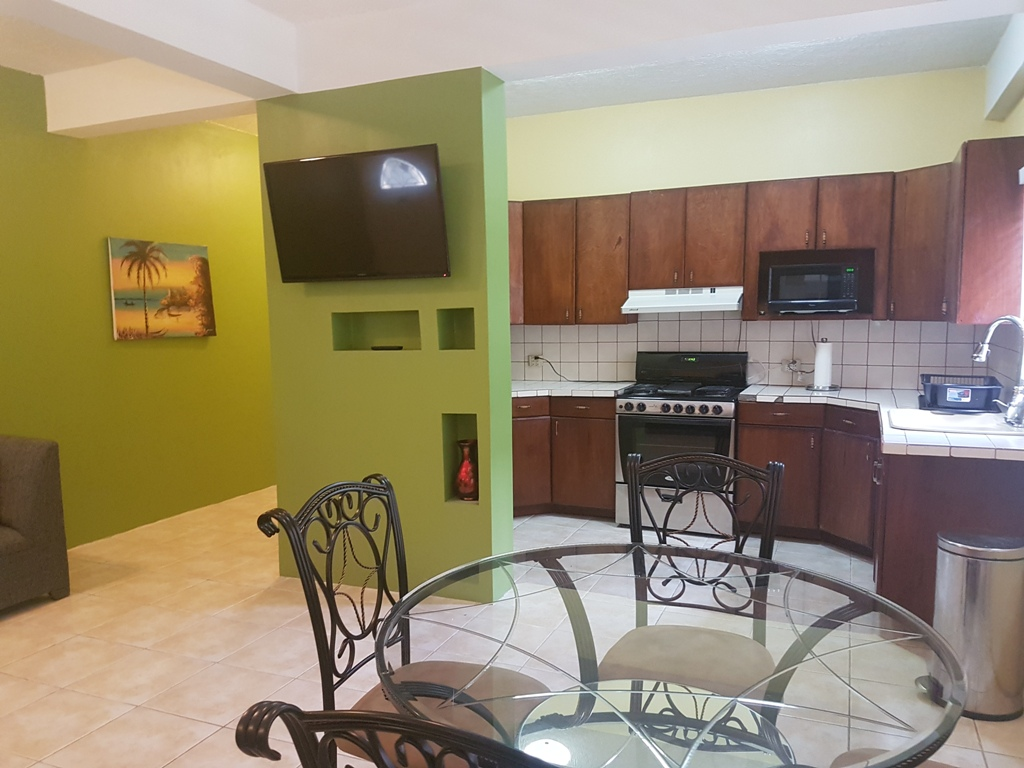 Furnished 1 Bed Apartment in Belize City for Rent
