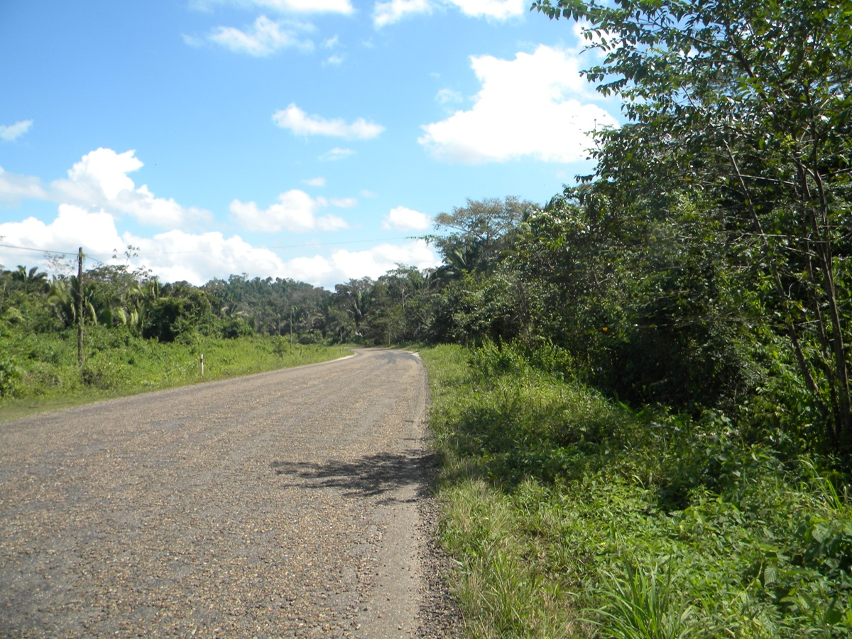 15 acres Land for Sale in Cayo