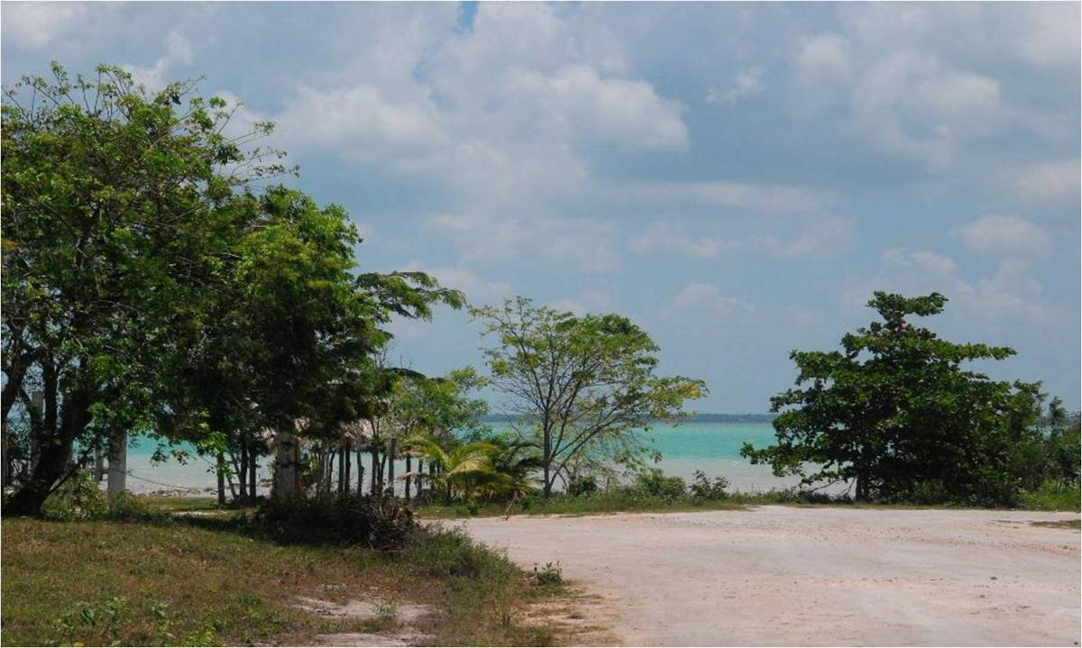 Reduced Seaview Lot in Finca Solana