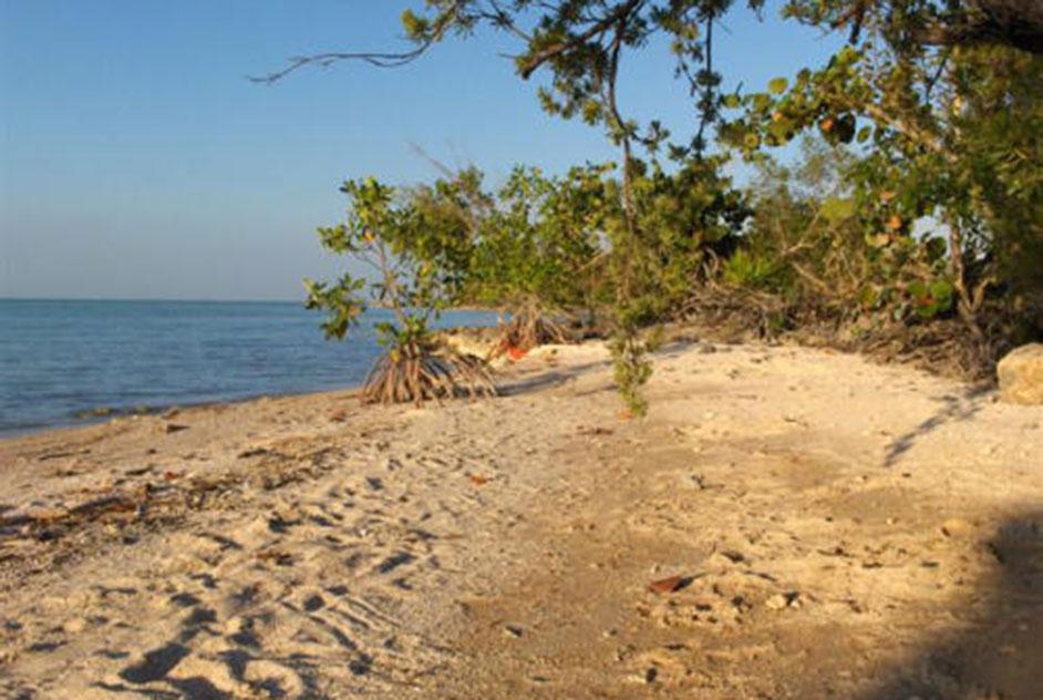 4.8 acres near Sarteneja Village, Corozal