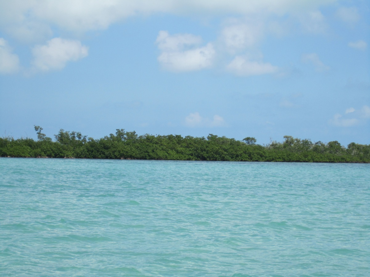 6.82 Acres on Hicks Caye
