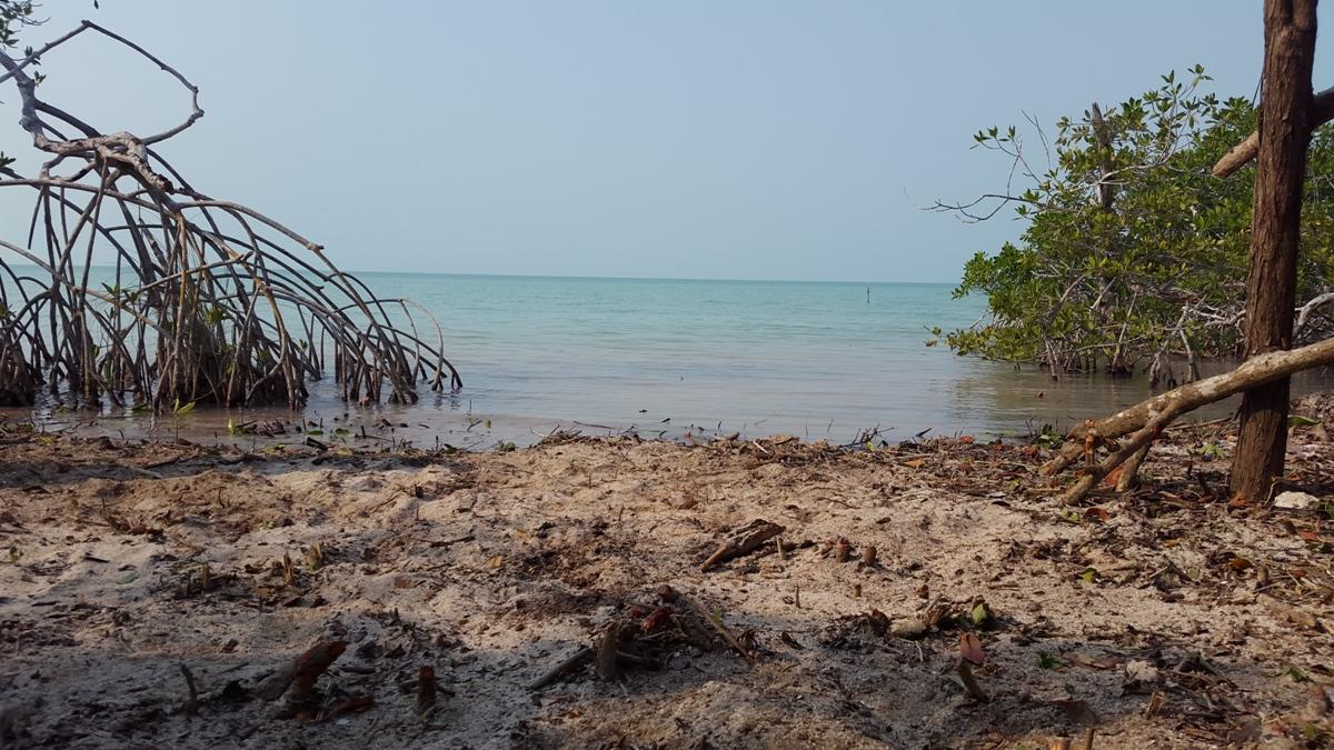 1.88 Acres of Beachfront Property for sale in Sarteneja Corozal