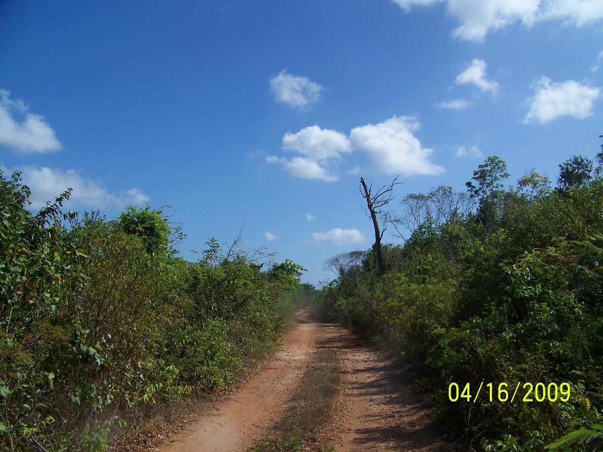 47 Acres in Sarteneja Village