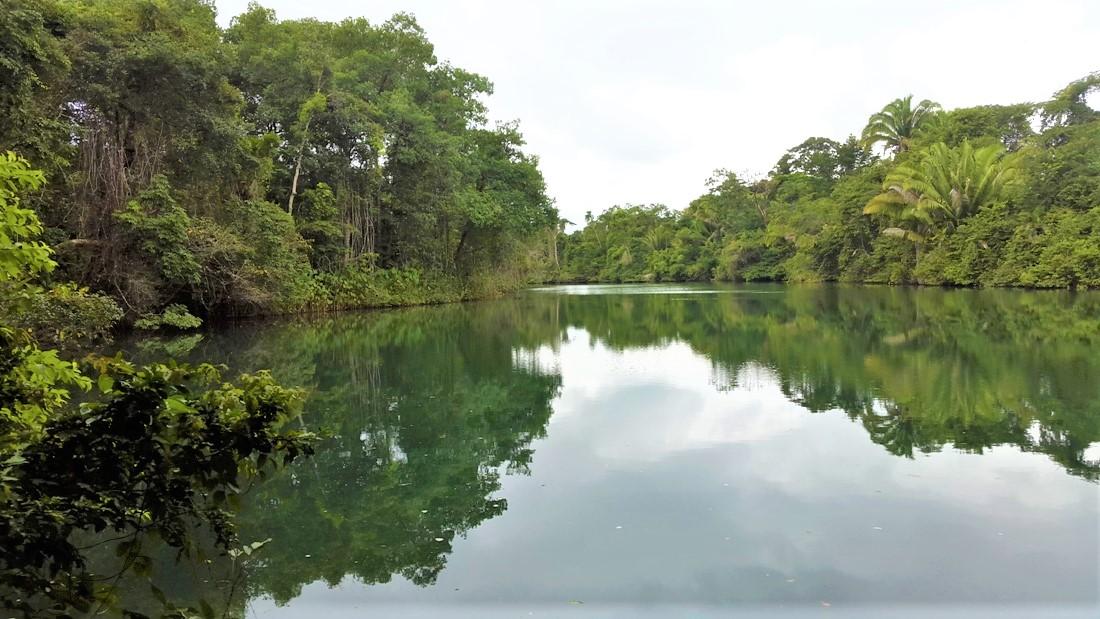 31 Acres of land on Rio Grande
