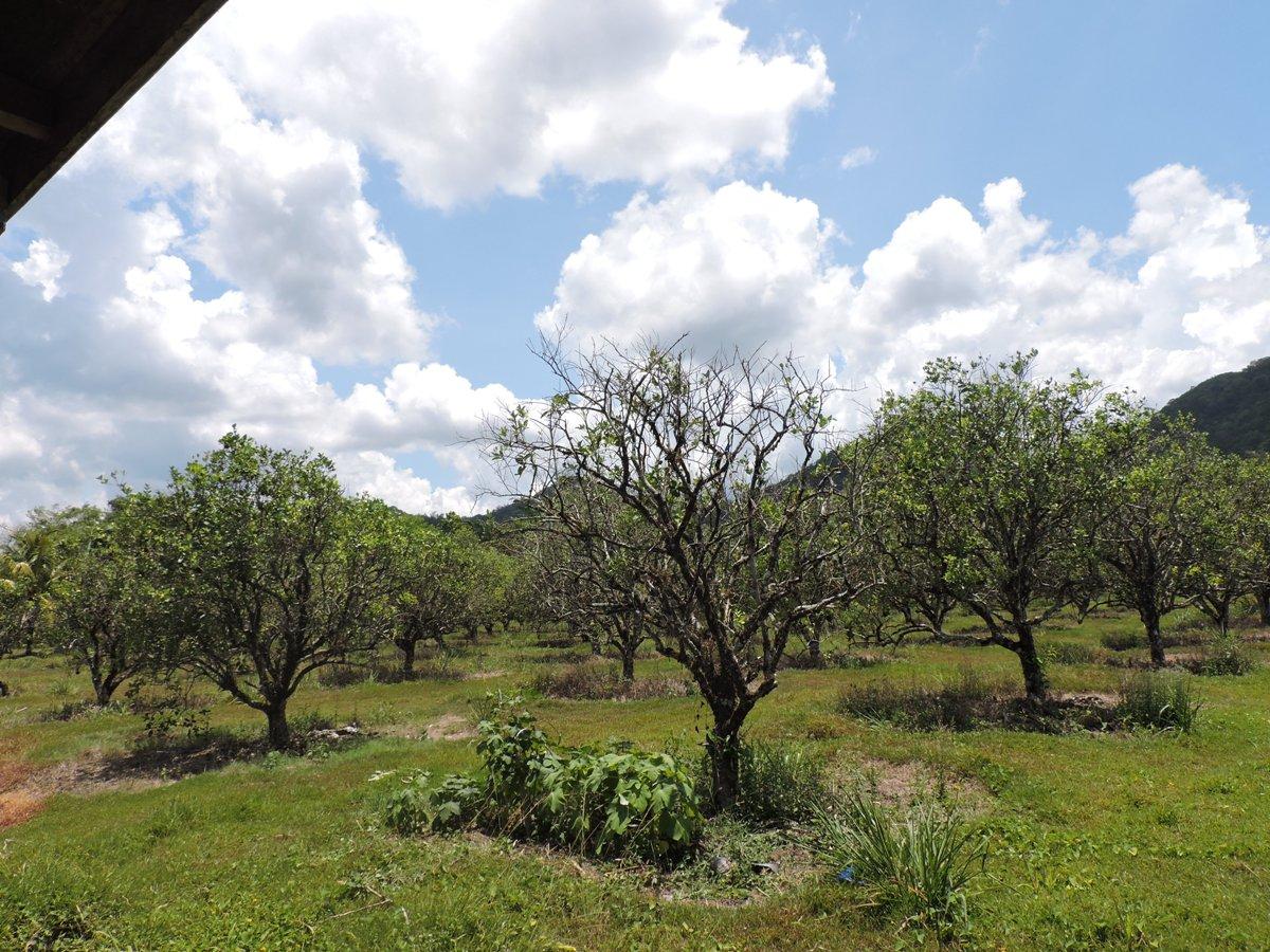 640 Acres in Punta Gorda for sale
