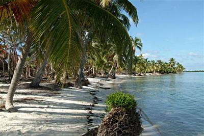 100 Acres Beachfront Property
