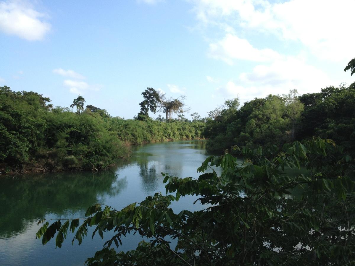 12.7 Acres on Sibun River