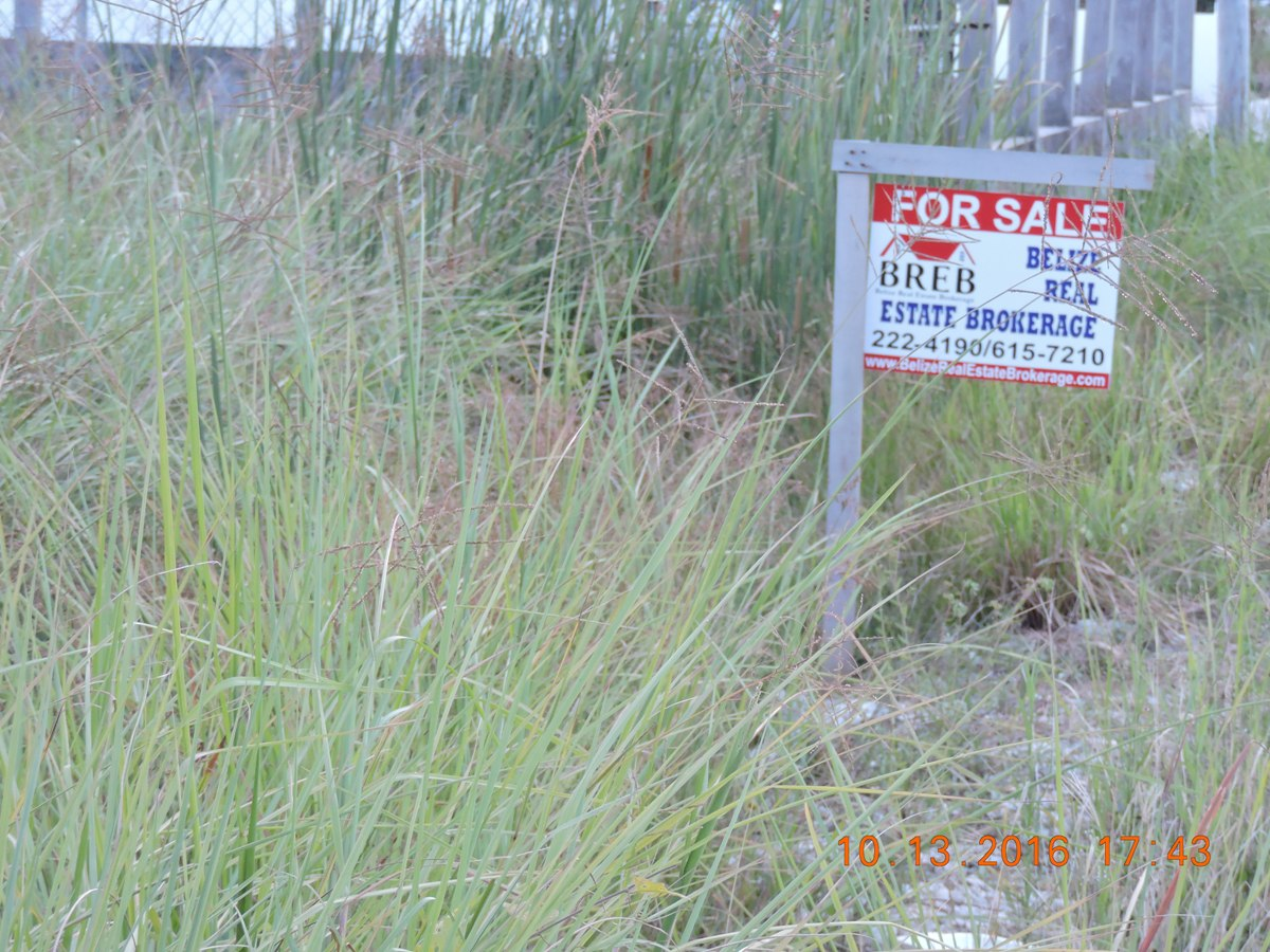 Large sea view lot