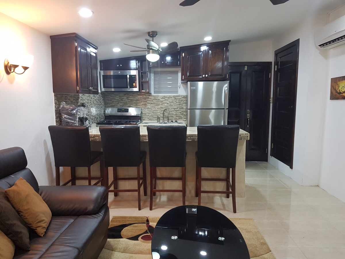 Furnished 1 Bed Apartment for Rent in Ladyville Belize