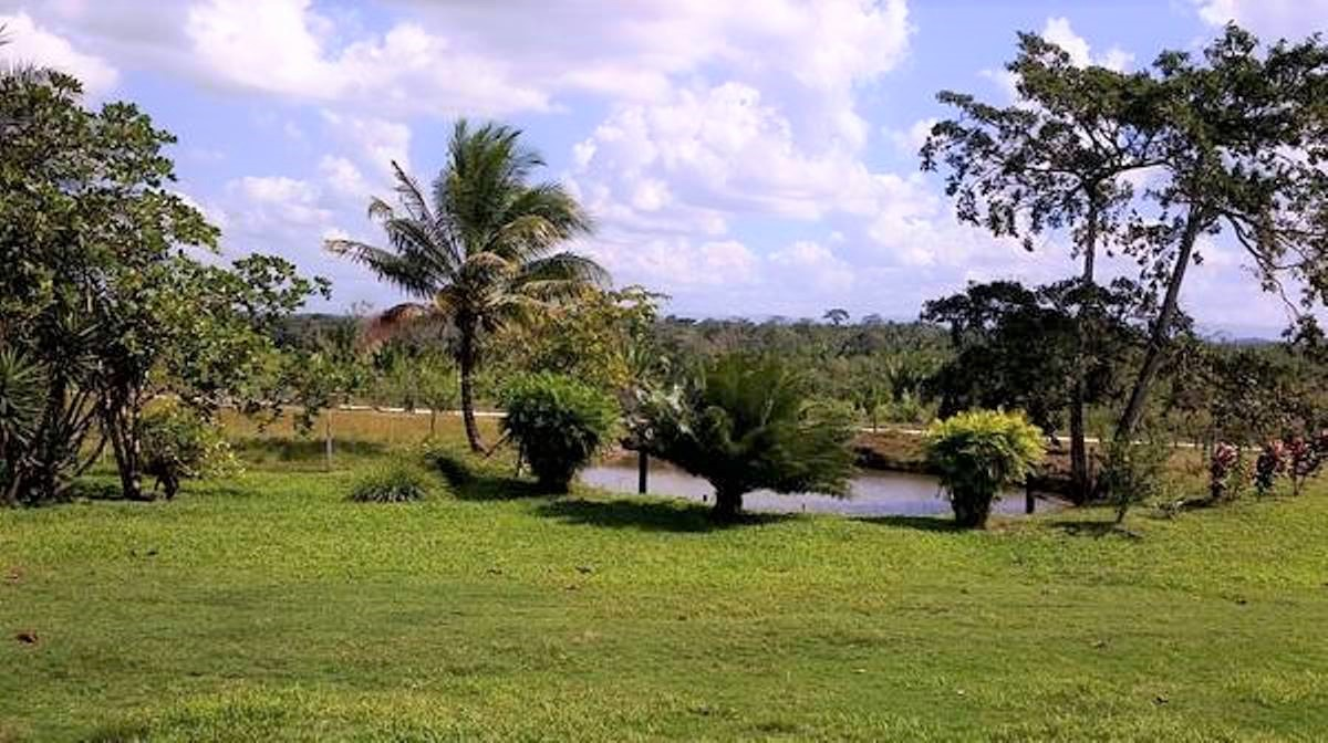 254 Acre Farm for Sale in Cayo District