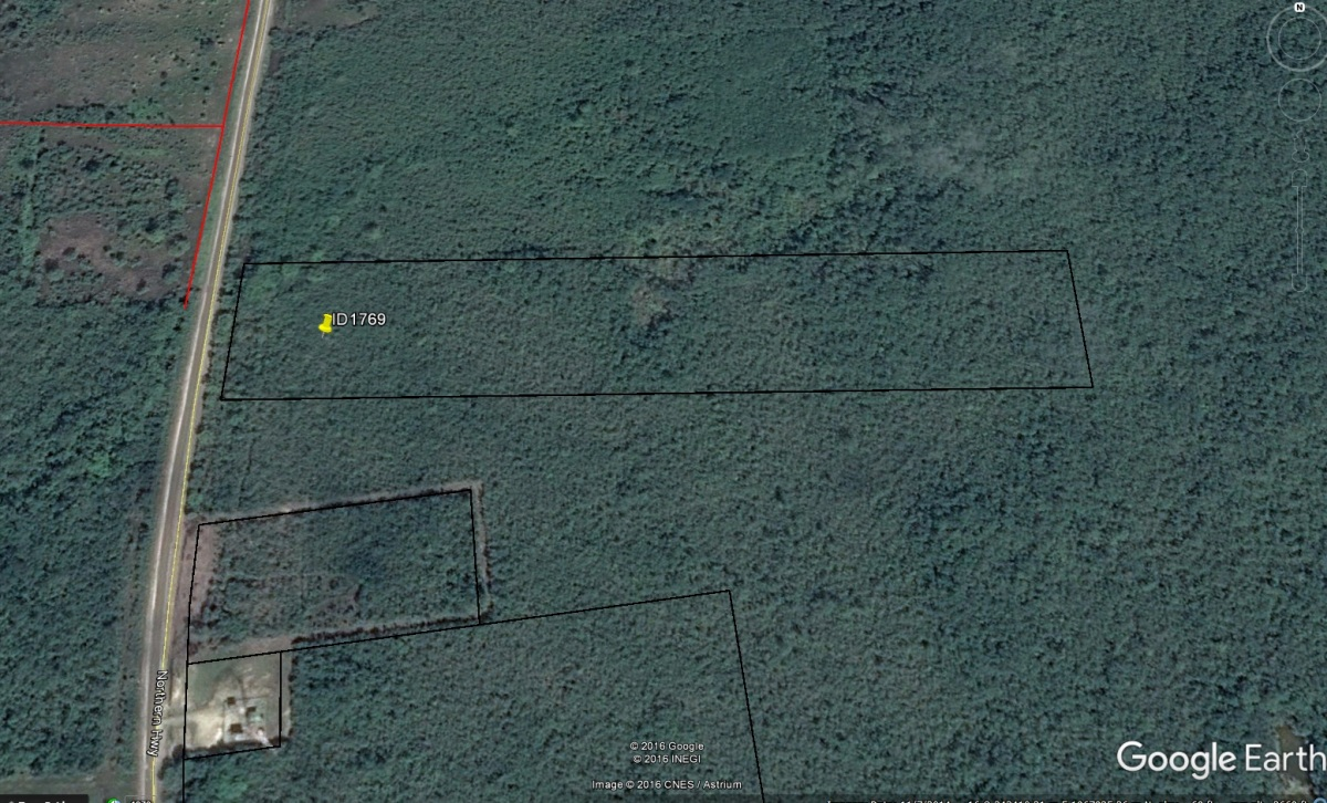 20 Acres at Mile 32.5 Philip Goldson Highway