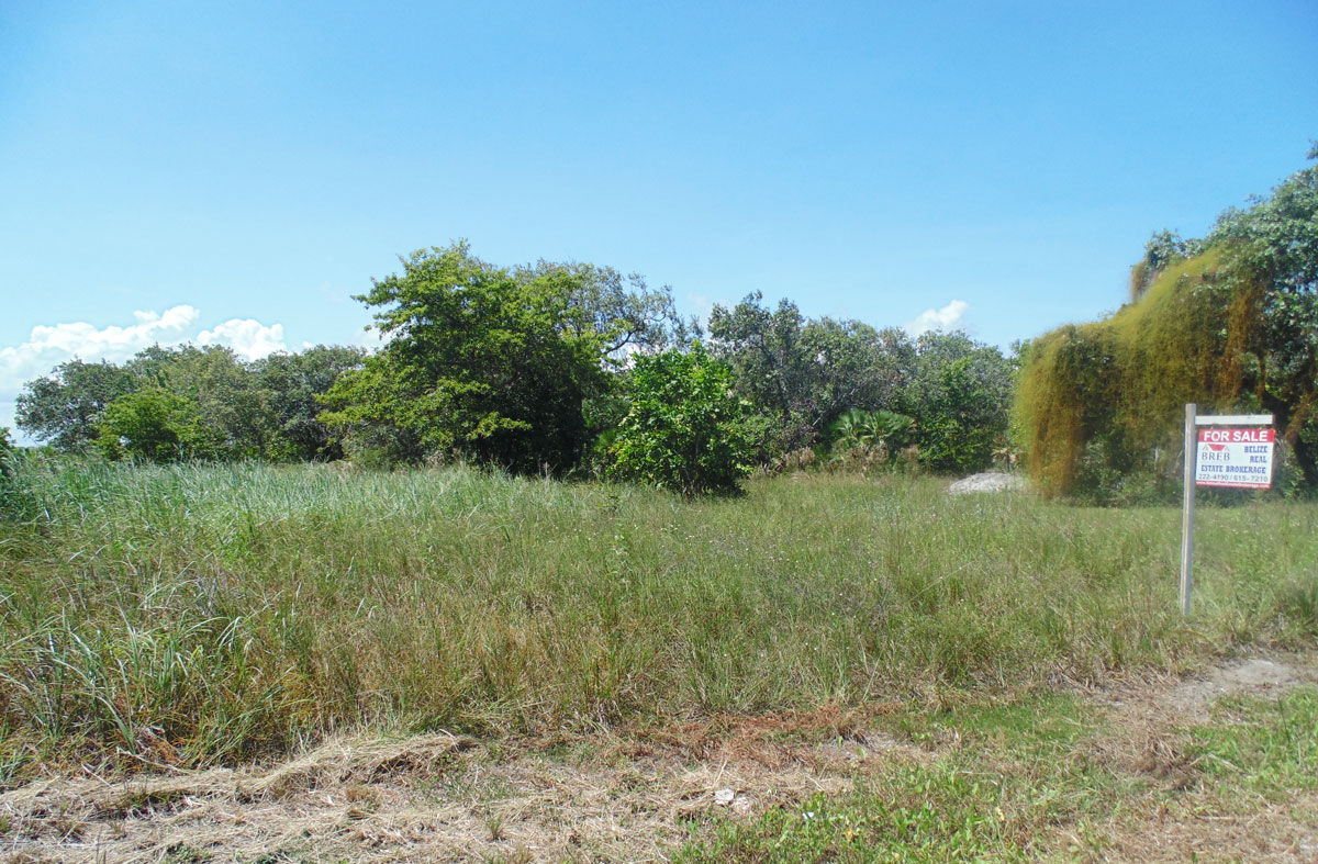 Prime Commercial Lot for Sale in Seine Bight Village