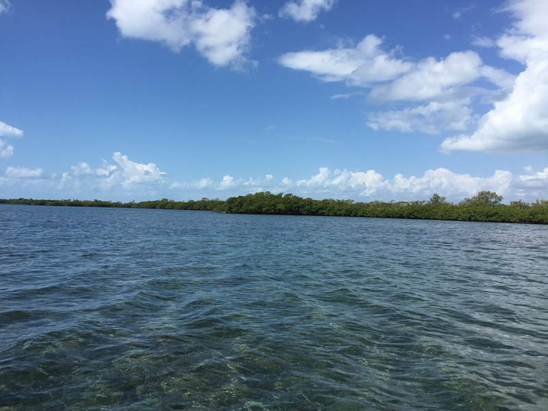 Vacant Land w Beautiful Sea Frontage