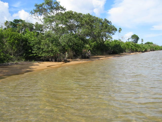 100 Acres of Lagoon front in Gales Point