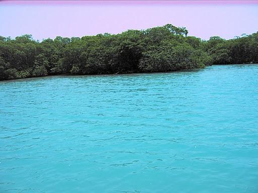 28 Acre Island