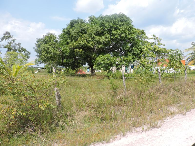 10 Acres Land w Commercial & Residential Use