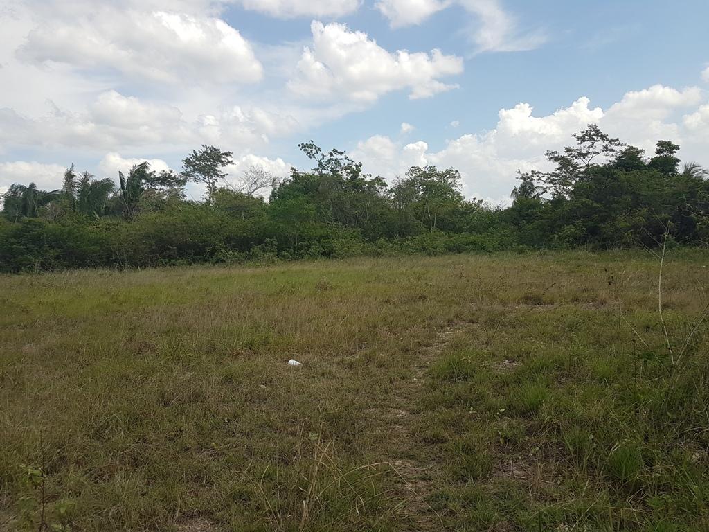 1 Acre lot in Belmopan