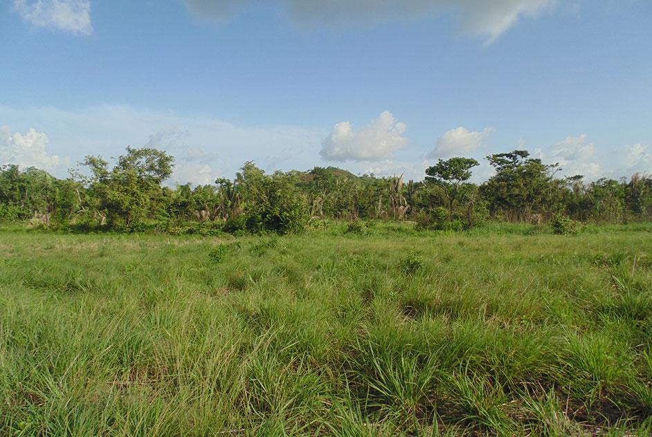 One Acre of Residential Lot in Belmopan