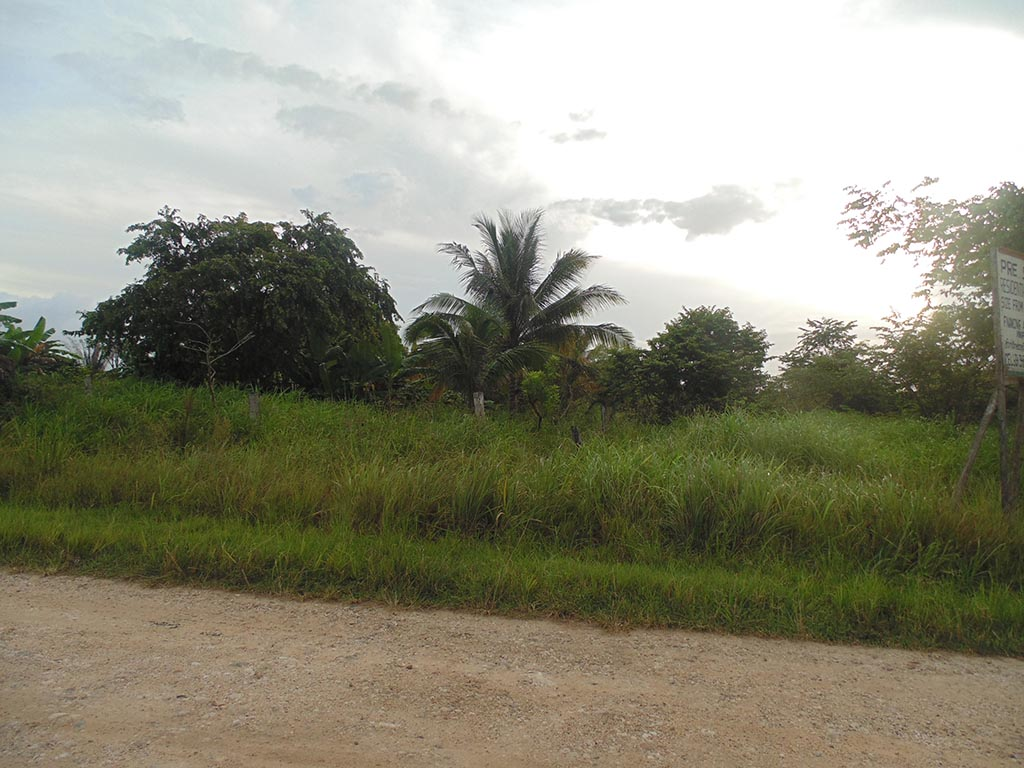 Lot with 1 Acre of Vacant Land