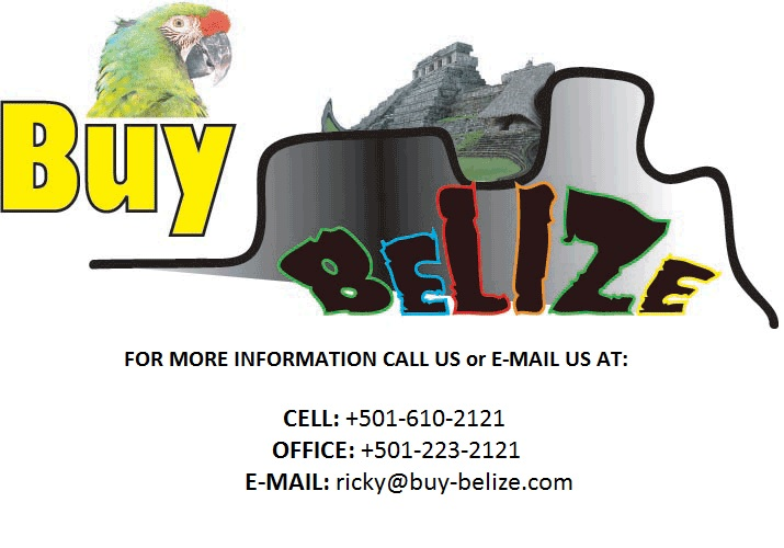 Income Property in Belize City