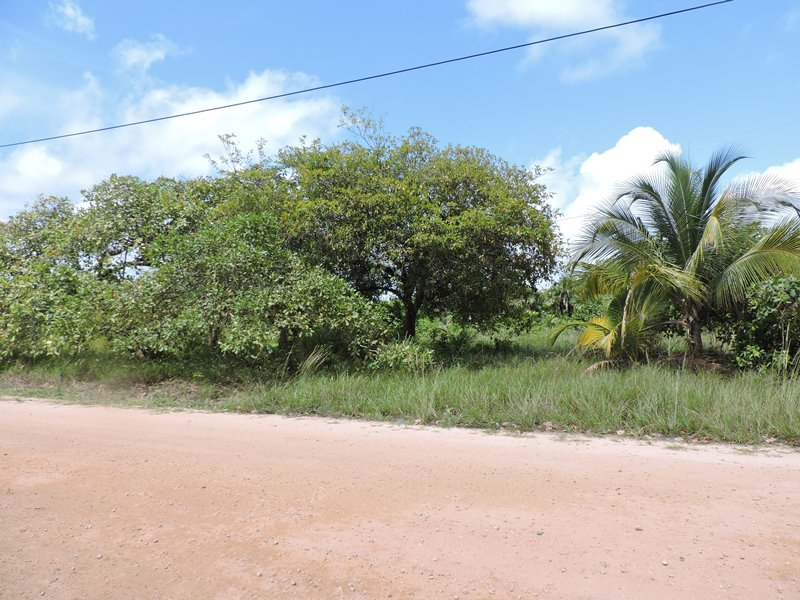 Large Residential Lot with Partial Sea View