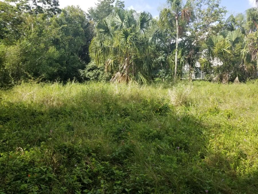 Land for Sale for Burrell Boom, Belize