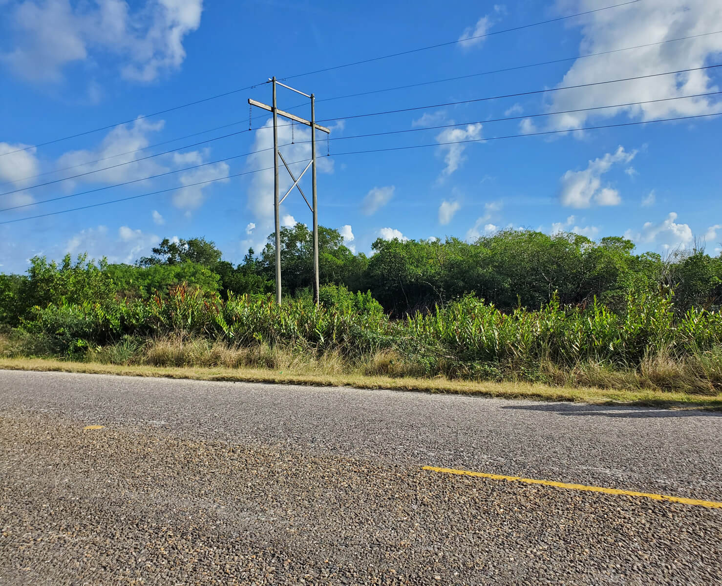Approximately 5 Acres of Land in Belize City
