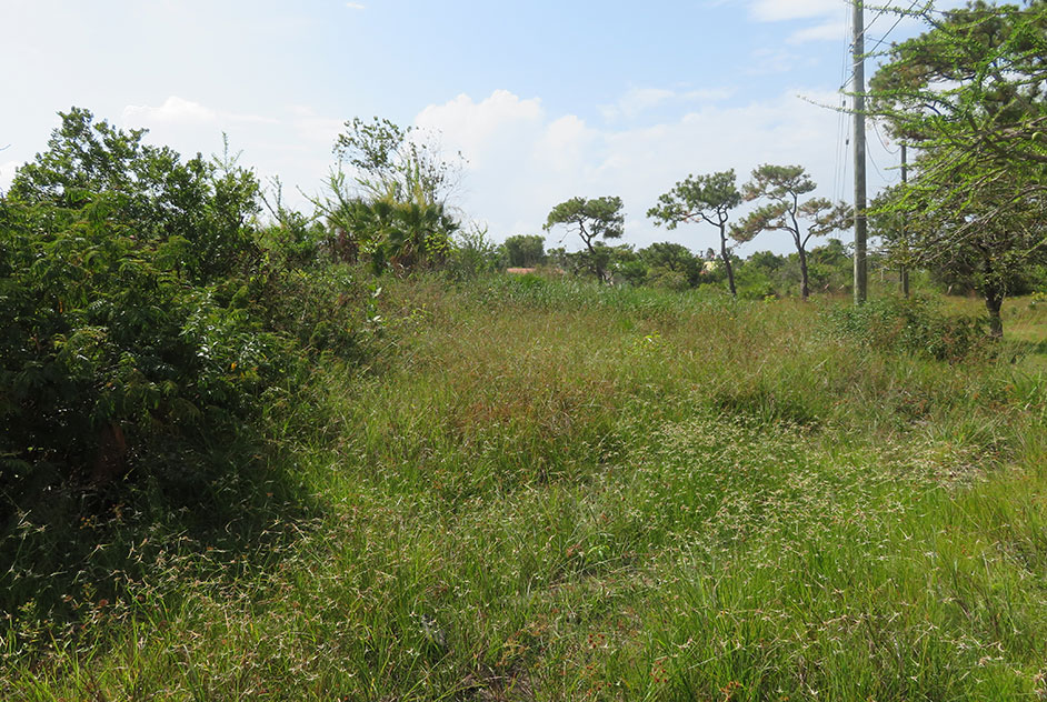 Double Lot for Sale in Lords Bank Ladyville