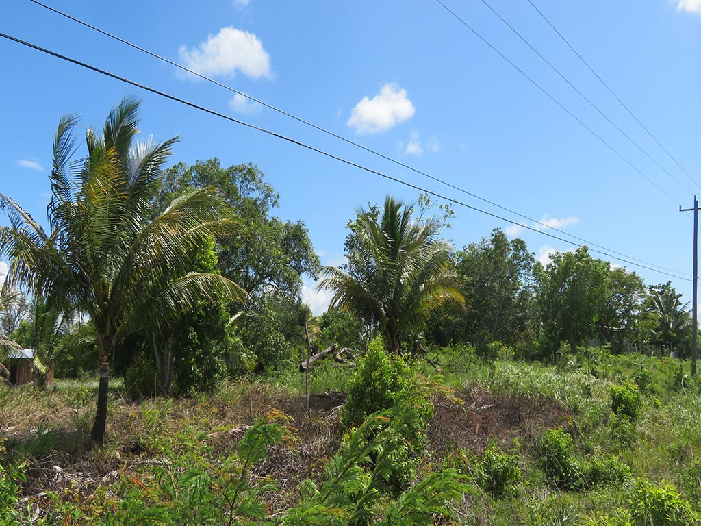 2 Acres Side by Side in Cotton Tree Village
