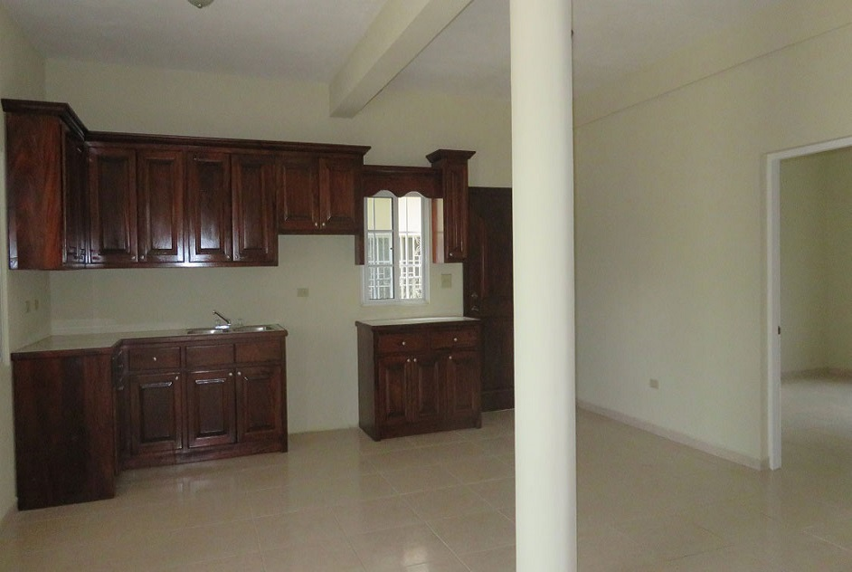 Brand New Two Storey house for rent US$750.00 for each floor. Can be rented separately