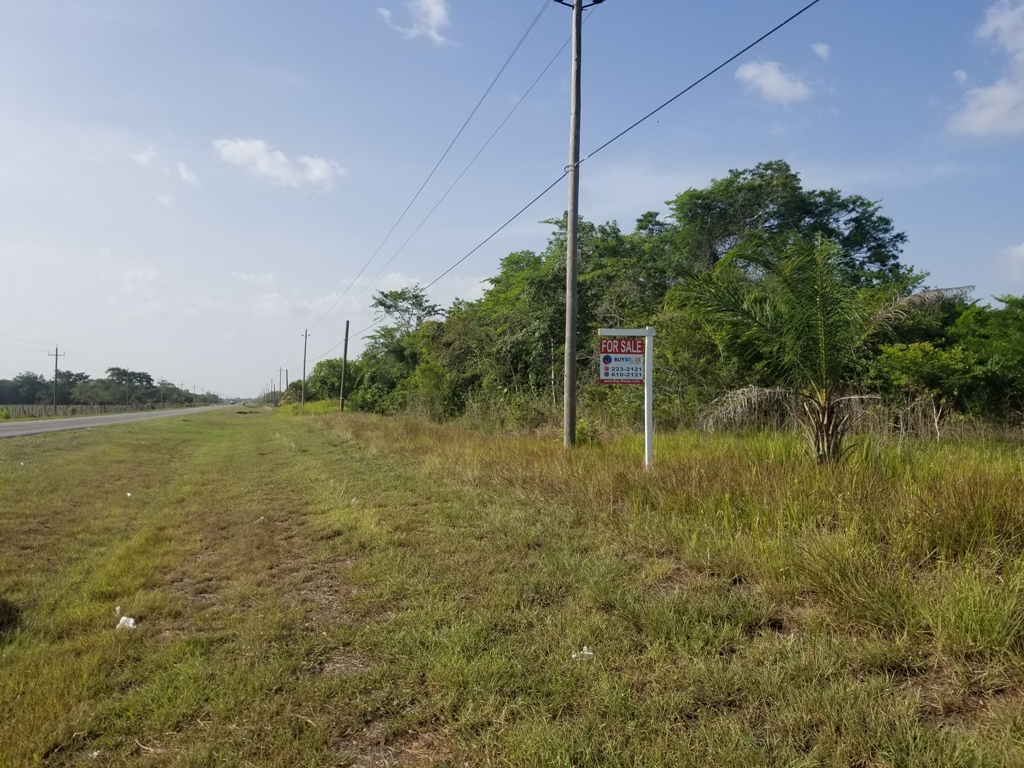 25 Acre Land in Orange Walk for Sale