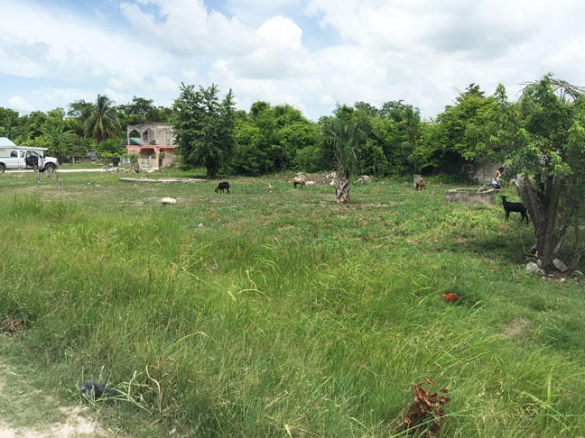 Highway Property located in Ranchito Village, Corozal