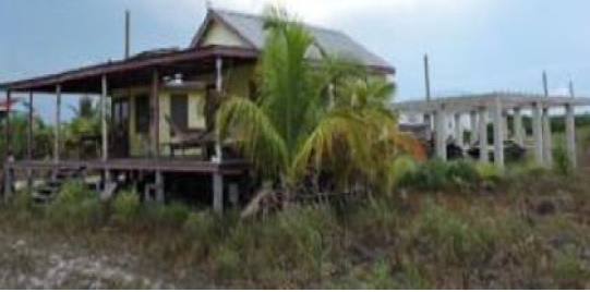 Lot with 2 Structures in Placencia