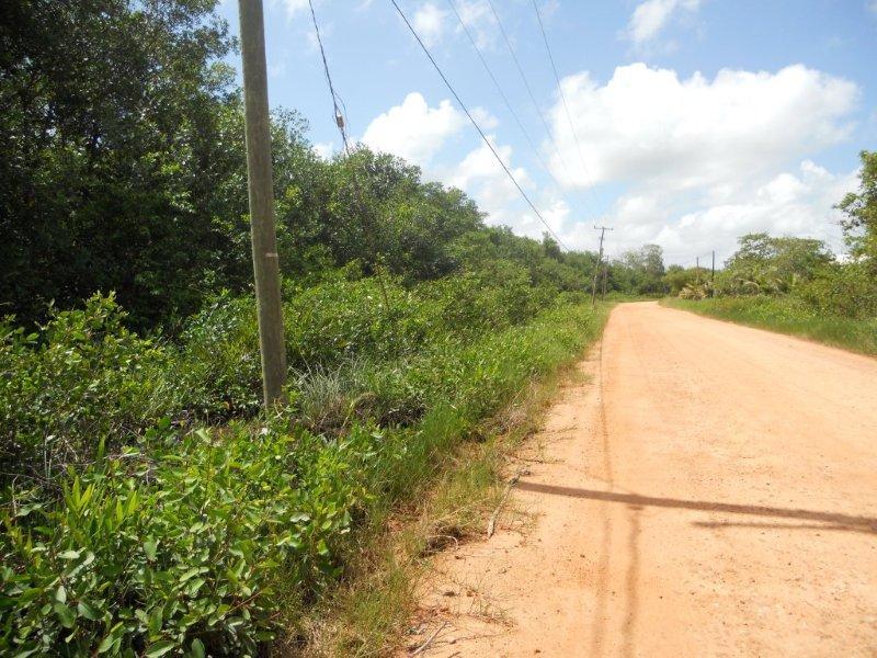 Land for Sale in Hopkins Village, Stann Creek