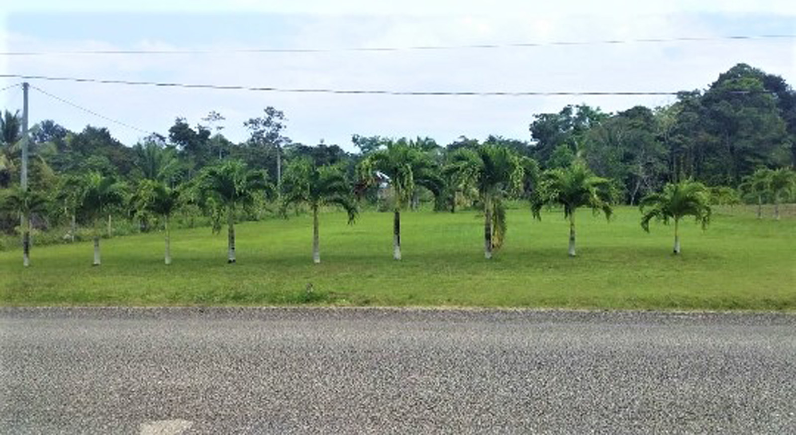 1 acre of land for sale in Toledo