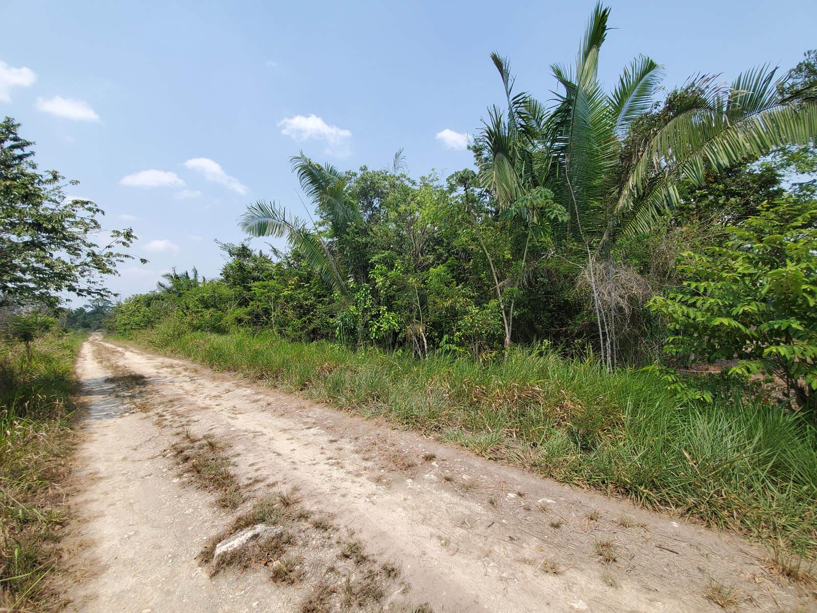 2 Acres of land for sale in Belmopan