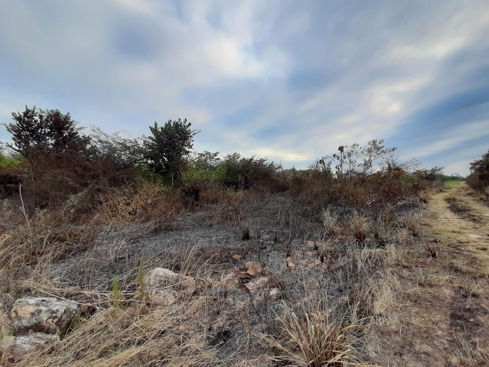 2 acres of land in belmopan