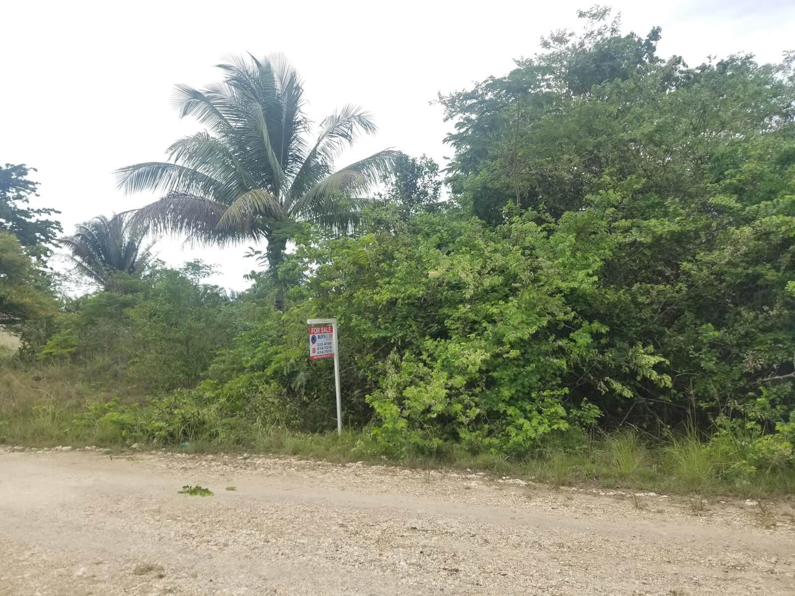 Lot in Belmopan for sale