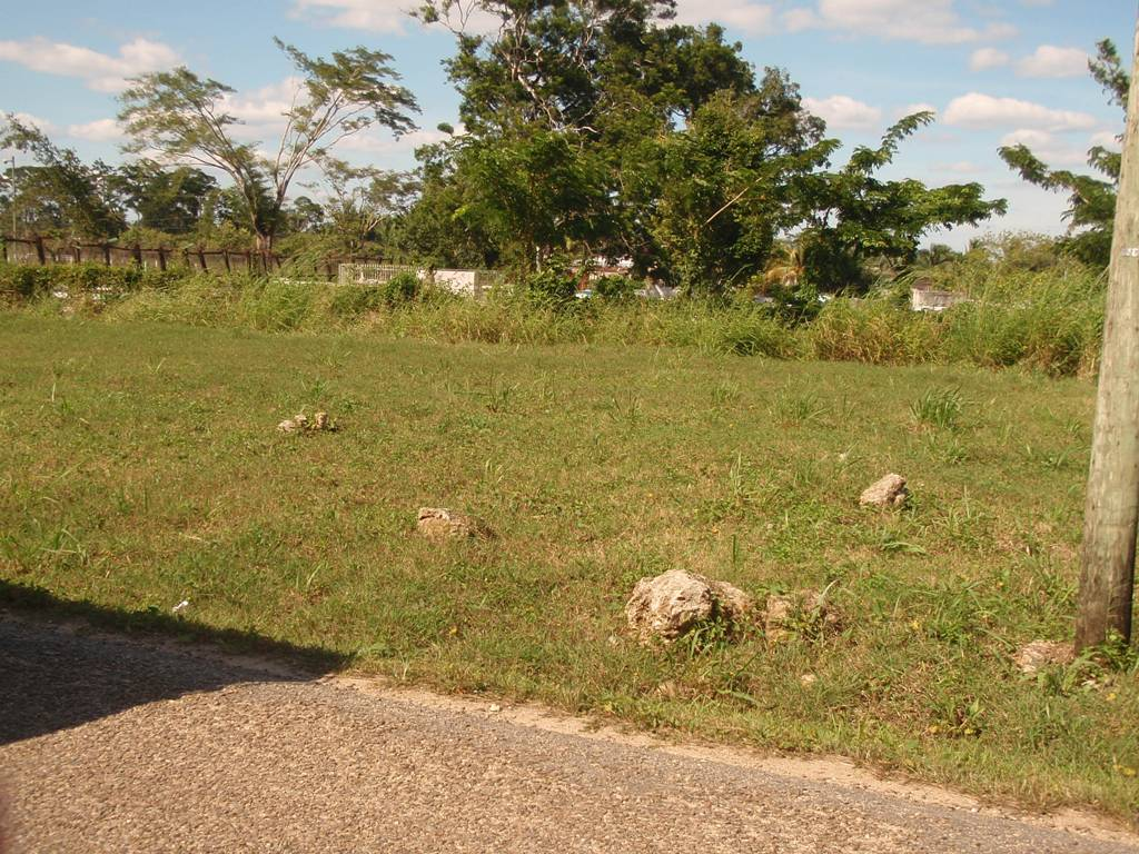 Lots For Sale in Belmopan