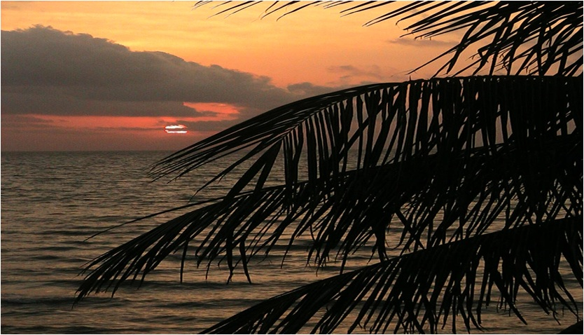 10.362 Acres Beach Front in Gales Point Manatee