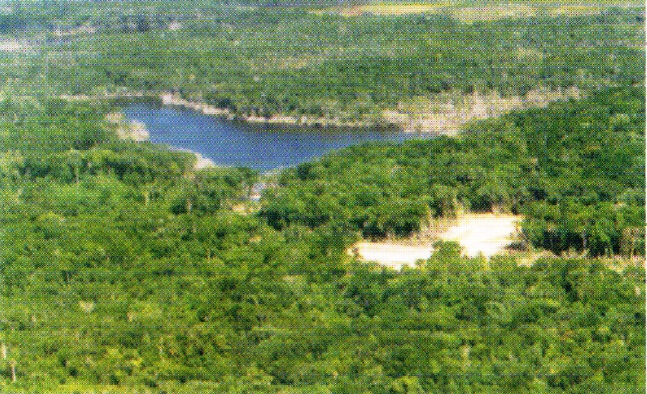 19.99 Acres in the Belize District