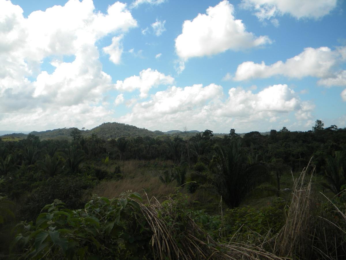 5 Acres in Belmopan