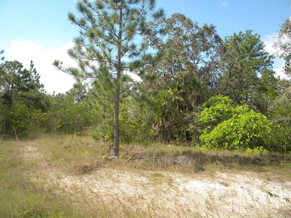 68 Acres on the Northern Highway