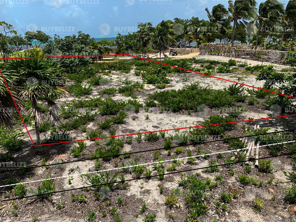 Sea Front Property For Sale In Caye Caulker