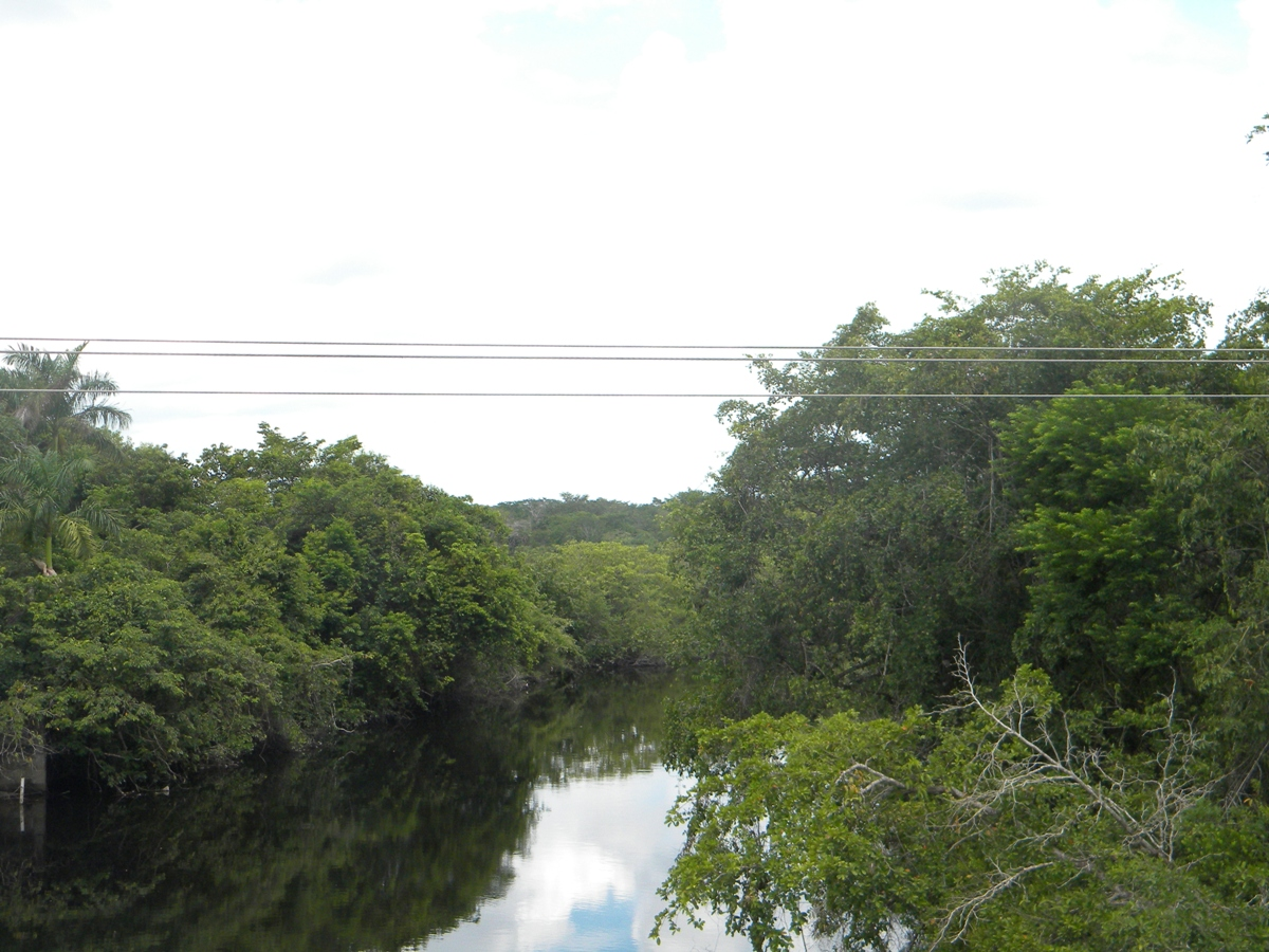 River Frontage Land in Orange Walk Town