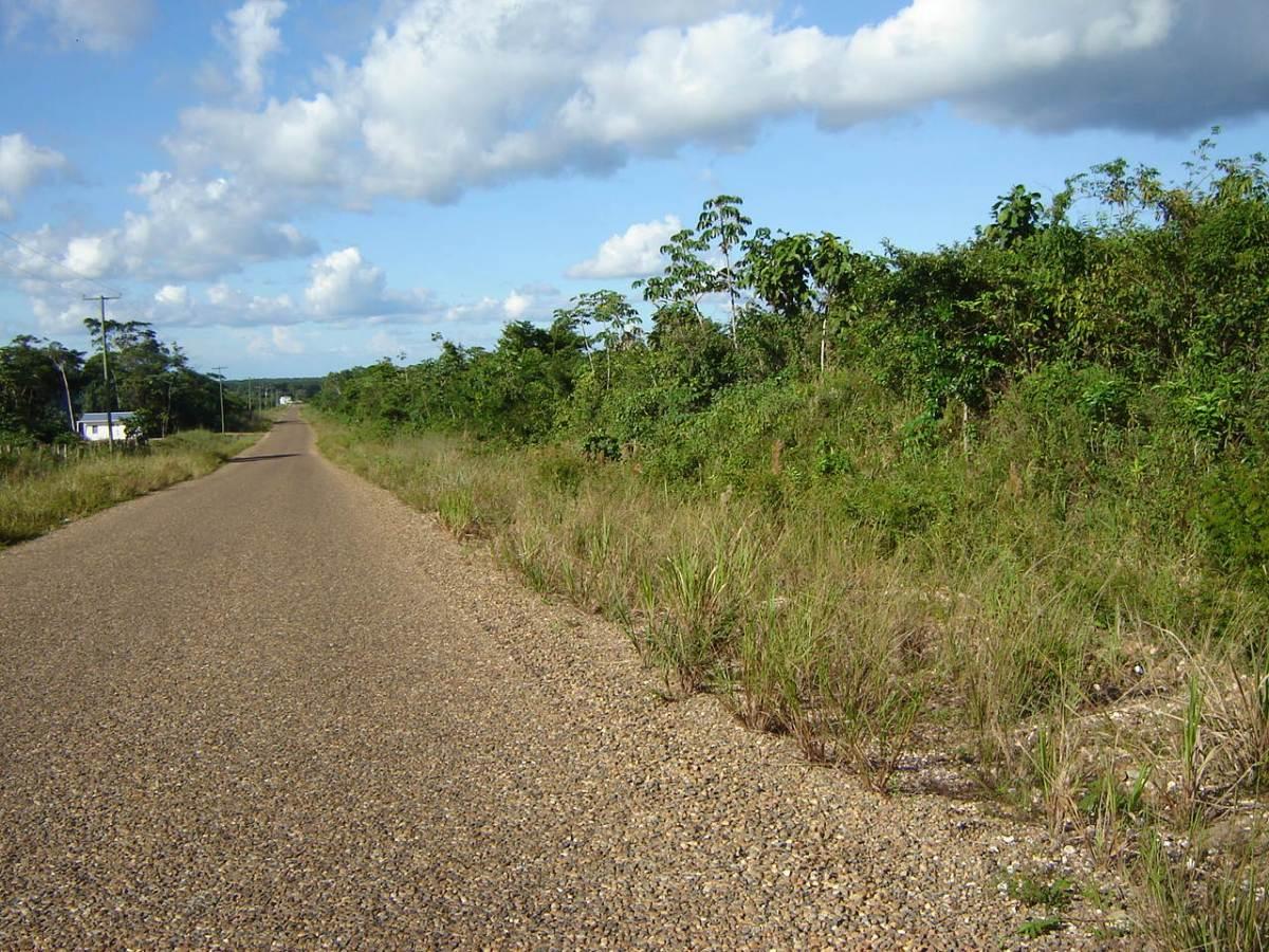 12 Acres in Jaguar Paw and Frank Eddie Village Cayo District