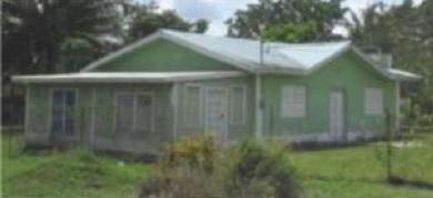 House for Sale in Guinea Grass Village Orange Walk District