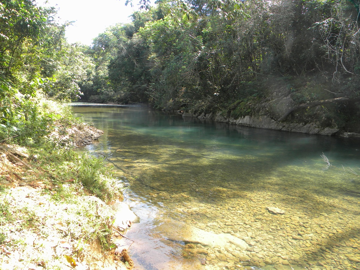 256 Acres of Farm  Caves Branch River